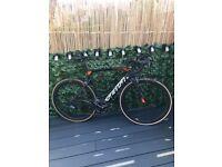 Sensa Giulia aero road bike