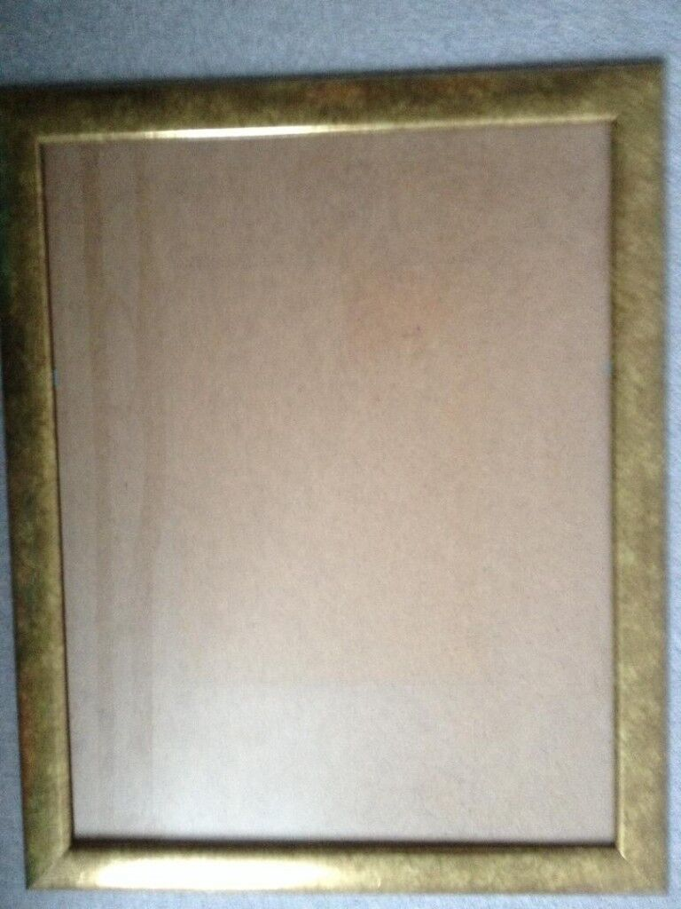 Gilt Frame with glass approx size 25 x 20 | in Worcester ...