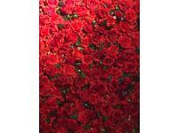 Flower Wedding Wall Hire