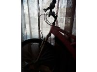 lady bike Shimano