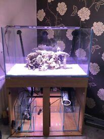 250litre Aquarium Fish Tank