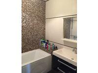 Bathroom fitter ,underfloor heating,plumbing