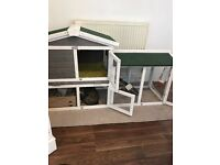Two bonded neutered rabbits and set up