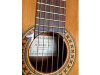 Handmade solid top Spanish Classical Guitar