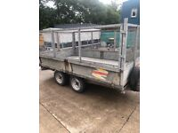 10 x 6 caged Bateson trailer with ramps ,and elec winch