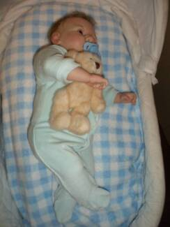 Reborn doll CUDDLY and cute, also UGLY. FREE POSTAGE Aust wide Johnsonville East Gippsland Preview
