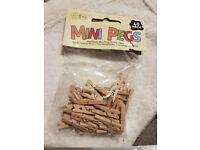 Minature Wooden Pegs