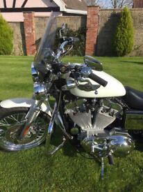 Harley Davidson 883 Sportster Hugger Limited addition