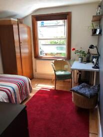 Gay friendly - vegitarian / vegan friendly house