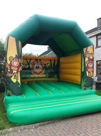Bouncy castle ( large)