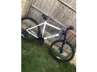 Apollo Evade bike