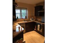 STUNNING DOUBLE IN BECKTON, 5 MINS FROM STATION, VEGETARIAN/VEGAN ONLY
