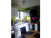 High gloss kitchen units witch butcher style worktop