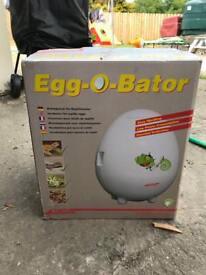 Reptile egg incubator