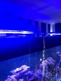 Tmc v2 ilumenaire reef led lights