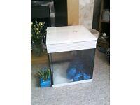 Nano fish tanks x2