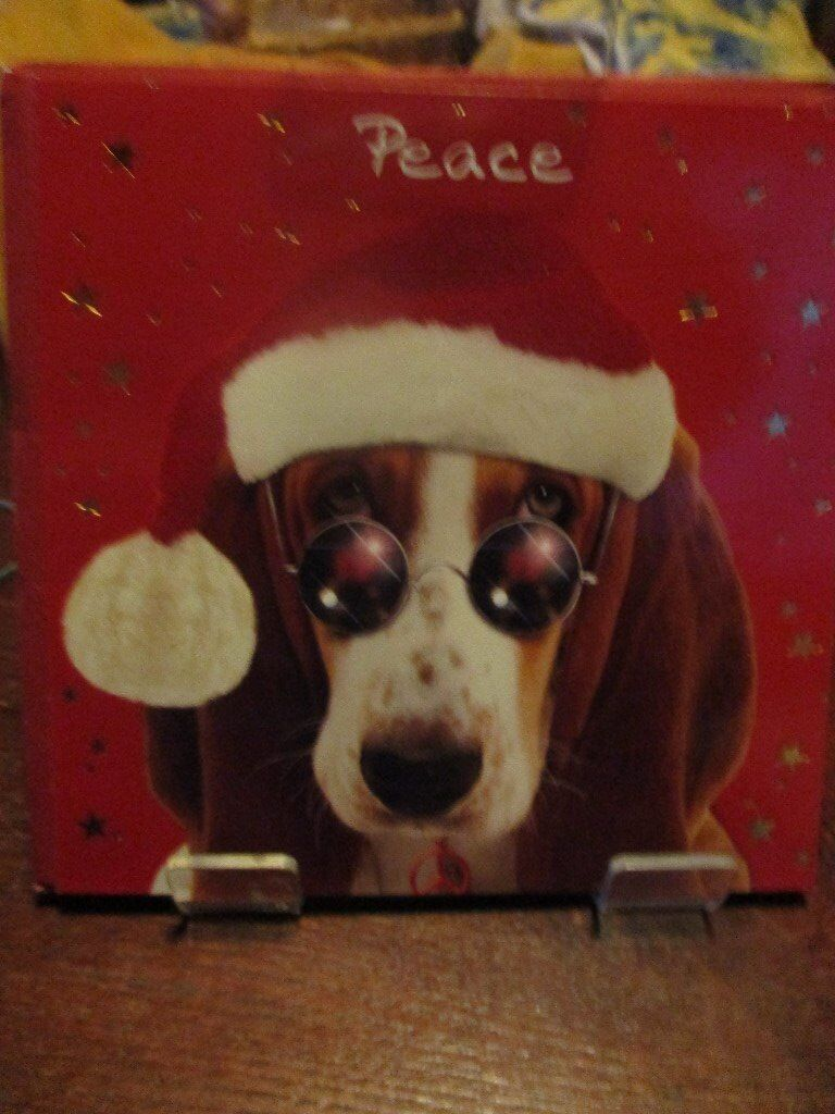 4 Peace Christmas Cards with a Beagle wearing a Hat | in Ashford ...