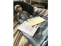Reborn doll has fine painted hair magnetic dummy blanket mittens and birth certificate