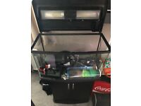120 Litre Fish Tank with Cabinet, External + Internal Filter, Starter Tank