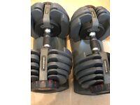 Bowflex dumbbells 21kg Each
