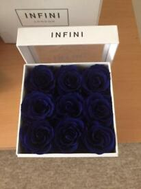 INFINI roses that last A Year navy blue
