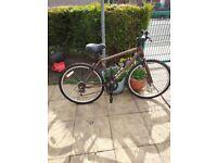 Apollo Vortice bike