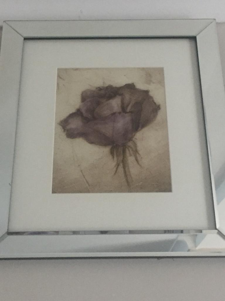 Mirror Framed Prints