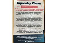Squeaky Clean, Commercial and Domestic Cleaning Services