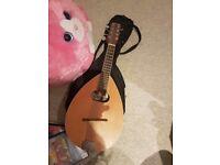 Gremlin Mandolin, not Fender or Gibson or whatever. Bargain!