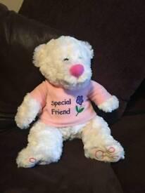 Special friend teddy bear