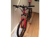 Gary fisher big sur disc mountain bike