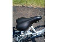 Ladies dutch style bike (Puch Bella Vista)