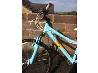 Girls mongoose mountain bike