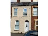 Spacious 2 double bed house FF