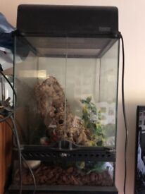 Exo terra Terrarium and light fixture