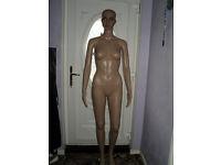 Brand New Mannequin Female Full Body Display Dummy