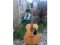 Montana acoustic guitar