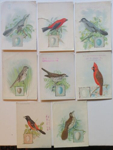 8 Singer Sewing Machine Song Birds Series Chromolith Trade Cards Dated 1898-1900