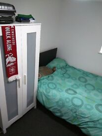 Furnished Double Room in Newly Renovated House