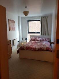 Cosy room & private bathroom in Liverpool, L1 area