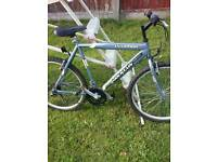 Mountain ridge warrior bike adult