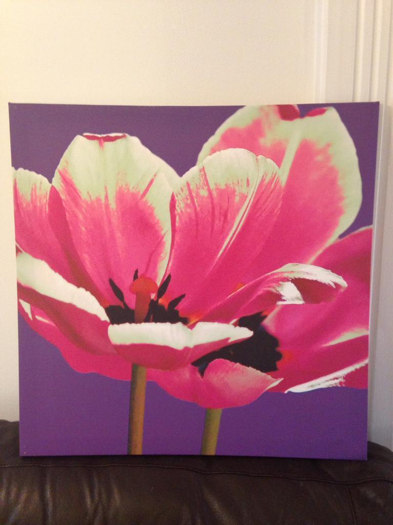 Fuschia flower canvas from Next