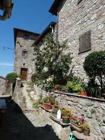 Holiday Homes in Rural Northern Tuscany