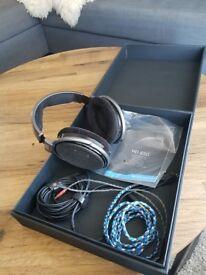Sennheiser HD650 headphones.