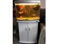 Aqua one fish tank all ready for fish