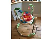 Fisher price rainforest jumpers baby bouncer