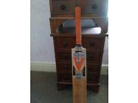 Slazenger v800 Pro cricket bat