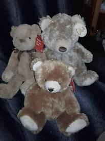 Set of 3 New teddys