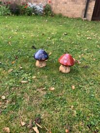 2 bright mushrooms for the garden