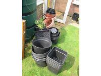 Plastic garden pots - free